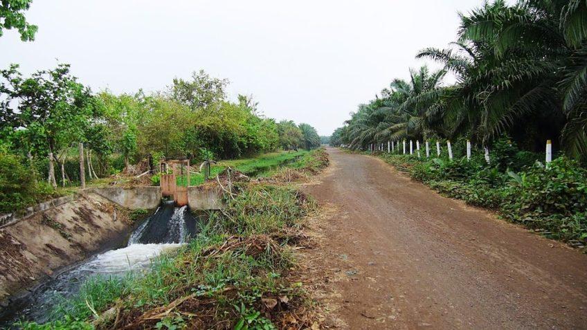 Distrito de Riego de Maríalabaja Agua y Tierra: Un problema de todos
